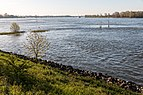 Rees, Rhein -- 2016 -- 2307.jpg