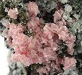 Rhodochrosite-Pyrite-Quartz-230151.jpg