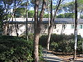 Rifkin Village Technion.jpg