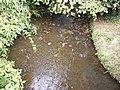 River Blyth at Walpole Bridge - geograph.org.uk - 1472708.jpg