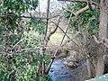River Dulas - geograph.org.uk - 125447.jpg