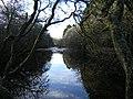 River Forth Near Aberfoyle - geograph.org.uk - 125729.jpg