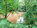 River Monnow - geograph.org.uk - 1399697.jpg