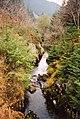 River Severn below Severn-Break-its-Neck Falls - geograph.org.uk - 573092.jpg