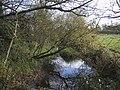 River Thames from Neigh Bridge - geograph.org.uk - 1587396.jpg