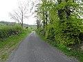 Road at Bofealan - geograph.org.uk - 1853984.jpg