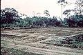 Robert Brumter - Gabon 40.jpg