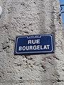Rue Bourgelat Lyon 2e - Plaque.jpg