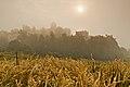Ruiny zamku Tenczyn, Rudno A-12 02.jpg