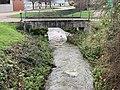 Ruisseau Merdasson - Marcigny (FR71) - 2020-12-25 - 2.jpg