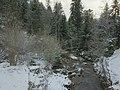 Ruisseau de la petite Meurthe enneigé.jpg