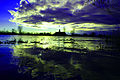 Rzeka Szkarpawa.jpg