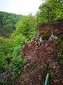 Söderåsen landscape cliff.jpg