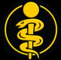 Słuzba zdrowia MW - zawodowy.png
