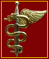 SANDF 7 medical Battalion Ops Medic Chest insignia.png