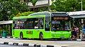 SBS Transit MAN A22 Euro V (Lion's City).jpg
