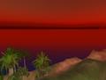 SL - ciel et palmiers virtuels -3.png