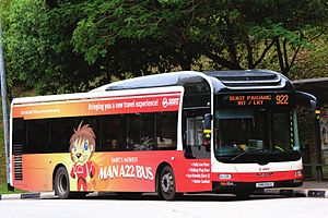 MAN NLxx3F - MAN NL323F operated by SMRT Buses, with Lion's City Hybrid body licensed by MAN and built by Gemilang Coachworks of Johor, Malaysia.