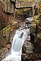 Sabbaday Falls Trail, Kancamagus Hwy, Waterville Valley (494212) (11924128535).jpg