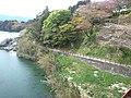 Sakurabuchi-Kôen Park - Toyogawa River2.jpg