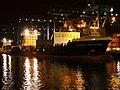 Samskip Innovator & Samskip Courier by night in Rotterdam pic2.JPG