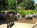 San Mateo Arboretum, San Mateo, CA - IMG 9073.JPG