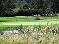 Sankt Jörgen Park Golf 01.jpg