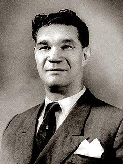 Santa Camarão Portuguese boxer