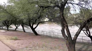 File:Santa Cruz river running high.webm