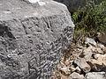 Santuario di Monte Sant'Angelo. Terrazza mediana. Veneris recepta 9.JPG