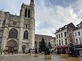 Sapins de Noël sur le parvis de la cathédrale de Sens.jpg