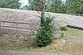 Saue, Harju County, Estonia - panoramio (52).jpg