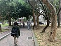 Scene in in National Tsing Hua University.jpg