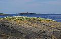 Seascape (4901471890).jpg