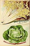 Seed annual, 1899 (1899) (14595287627).jpg