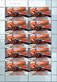 Sheet of German 145+55 2008 Summer Olympics stamps.jpg