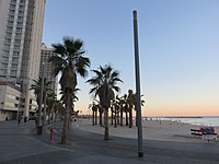 Shlomo Lahat Promenade, Tel Aviv - 2018-11-02 - IMG 1853.jpg