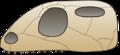 Skull euryapsida.png