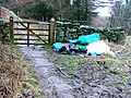 Sledging Debris, Hasty Bank - geograph.org.uk - 99669.jpg