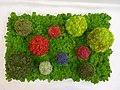 Slika prikazuje različne barvne odtenke in oblike, ki so možne pri dizajnu z dekorativnim mahom..jpg