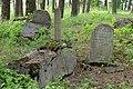Smėlynės senosios žydų kapinės - panoramio - Darius Smalskys (11).jpg