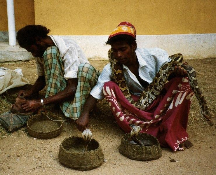 File:Snake Charmers, Anuradhapura.jpg