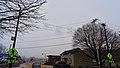 Snowflake Skyline - panoramio (1).jpg