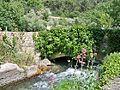 Sorgue à Fontaine de Vaucluse.JPG