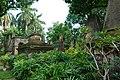 South Park Street Cemetery Kolkata (38293887742).jpg