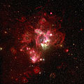 Southern part of the spectacular N44 H II region in the Large Magellanic Cloud.jpg
