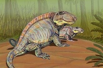 Sphenacodontidae - Restoration of two individuals of Sphenacodon