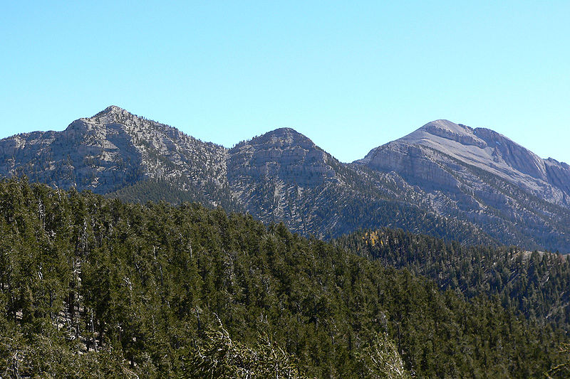 File:Spring Mountains Bristlecone Trail 2.jpg