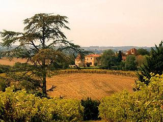 Saint-Orens-Pouy-Petit Commune in Occitanie, France