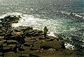 Staffa - the southern tip - geograph.org.uk - 47182.jpg